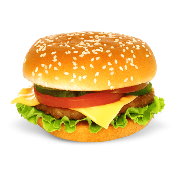 it takes 660 gallons of water to produce a hamburger