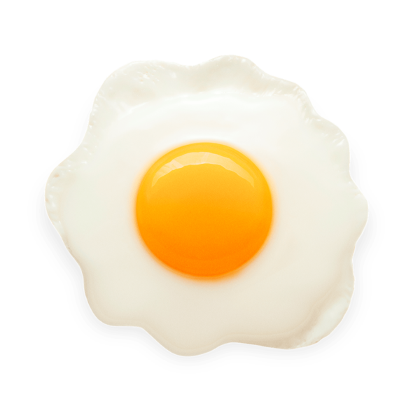 it takes 52 gallons of water to produce a large egg